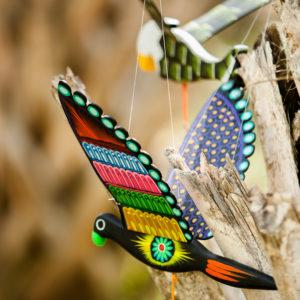 Aves de Madera
